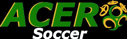 Summer Soccer League